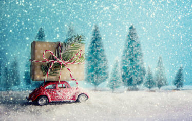 Car Lover Holiday Gifts